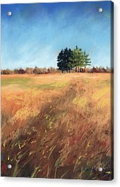 Swaying Amber Acrylic Print by Christine Camp