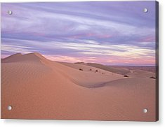 Acrylic Print featuring the photograph Sweeping Dunes At Sunset by Patricia Davidson
