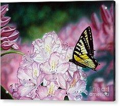 Sweet Abundance Acrylic Print