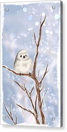 Sweet Cold Acrylic Print