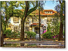 Sweet Home New Orleans - Walking The Dogs Acrylic Print