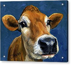 Sweet Jersey Cow Acrylic Print by Dottie Dracos