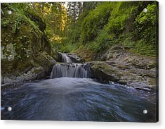Sweet Little Waterfall Acrylic Print by David Gn