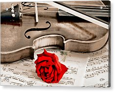 Sweet Music Acrylic Print by Don Schwartz