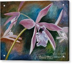 Acrylic Print featuring the painting Sweet Orchid by Brenda Thour