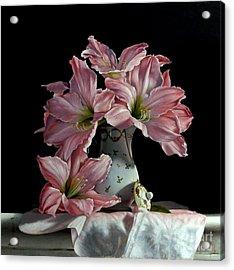 Sweet Star Amaryllis Acrylic Print