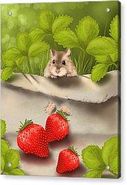 Sweet Surprise Acrylic Print by Veronica Minozzi