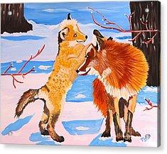 Sweet Vixen And Kit Foxes Acrylic Print