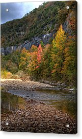 Acrylic Print featuring the photograph Sweetgums At Steel Creek  by Michael Dougherty