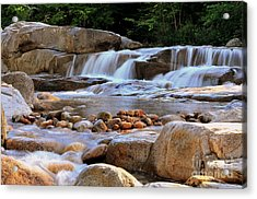 Swift River  Acrylic Print by Catherine Reusch Daley