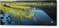 Swiftcurrent Lake Glacier National Park Panorama Acrylic Print by Steve Gadomski