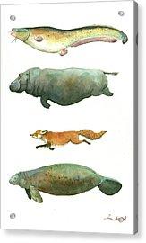 Swimming Animals Acrylic Print by Juan Bosco