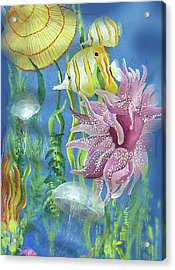 Swimming With The Jellies Acrylic Print by Janis Grau