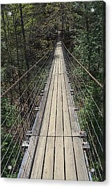 Swinging Bridge Falls Creek Falls State Park Acrylic Print