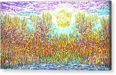 Acrylic Print featuring the digital art Swirling Brilliant Trees - Boulder County Colorado by Joel Bruce Wallach