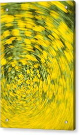 Swirling Flowers Acrylic Print