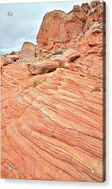 Acrylic Print featuring the photograph Swirling Sandstone Color In Valley Of Fire by Ray Mathis