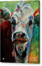 Swiss Cow - 1 Acrylic Print