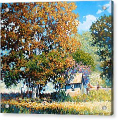 Sycamores With Tallow Acrylic Print