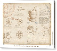 Symbols And Elements Acrylic Print