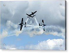 Symetry Of Flight Acrylic Print by Angel  Tarantella
