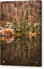 Symmetry Acrylic Print by Heather Applegate