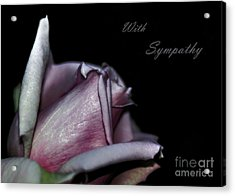 Sympathy Card With A Rose Acrylic Print by Kaye Menner