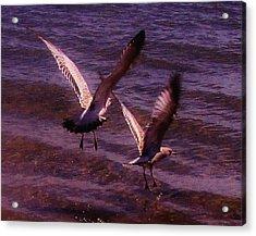 Synchronized Landing Acrylic Print
