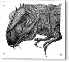 T-rex Acrylic Print by Murphy Elliott