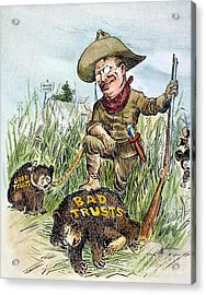 T. Roosevelt Cartoon, 1909 Acrylic Print by Granger
