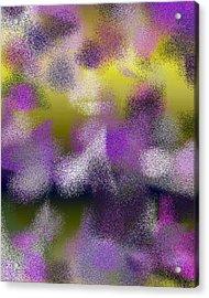 T.1.380.24.4x5.4096x5120 Acrylic Print by Gareth Lewis