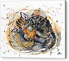Acrylic Print featuring the painting Tabby Kitten Playing With Yarn Clew  by Zaira Dzhaubaeva