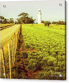 Table Cape Lighthouse Acrylic Print