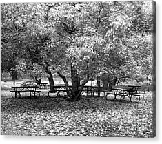 Tables And Tree Acrylic Print