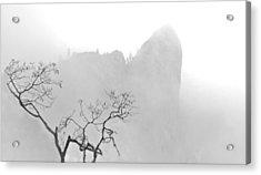 Taft Point In Mist Acrylic Print