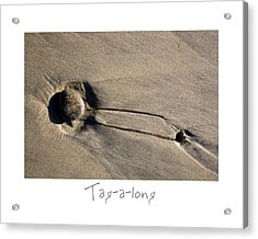 Tag-a-long Acrylic Print by Peter Tellone