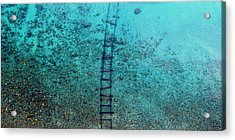 Acrylic Print featuring the photograph Tahoe Tracks by Brad Scott