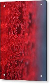 Tail Light Ice Acrylic Print