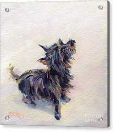 Tail Wagging Fury Acrylic Print by Kimberly Santini