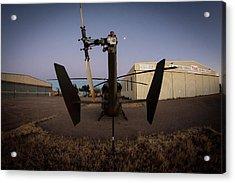 Acrylic Print featuring the photograph Tailblade by Paul Job