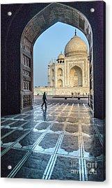Taj Mahal 01 Acrylic Print