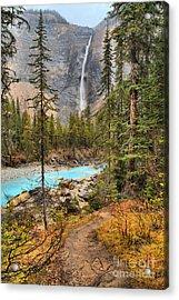 Acrylic Print featuring the photograph Takakkaw Falls Fall Portrait by Adam Jewell