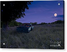 Take A Picture Of This... Acrylic Print by Gordon Wood