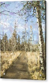 Take A Walk Acrylic Print by Annette Berglund