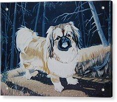 Take Me Home Acrylic Print