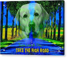 Take The High Road Acrylic Print