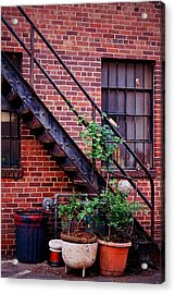 Take The Stairs Acrylic Print