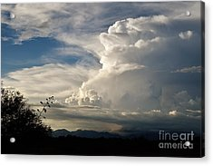 Take The World By Storm Acrylic Print