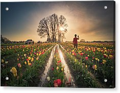 Acrylic Print featuring the photograph Taking Sunset Pictures Using A Mobile Phone by William Lee