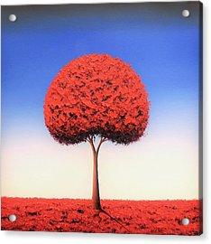 Taking The Day Acrylic Print by Rachel Bingaman